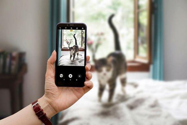 Alcatel 1S, duálny fotoaparát, vysoké rozlíšenie, bokeh efekt, umelá inteligencia